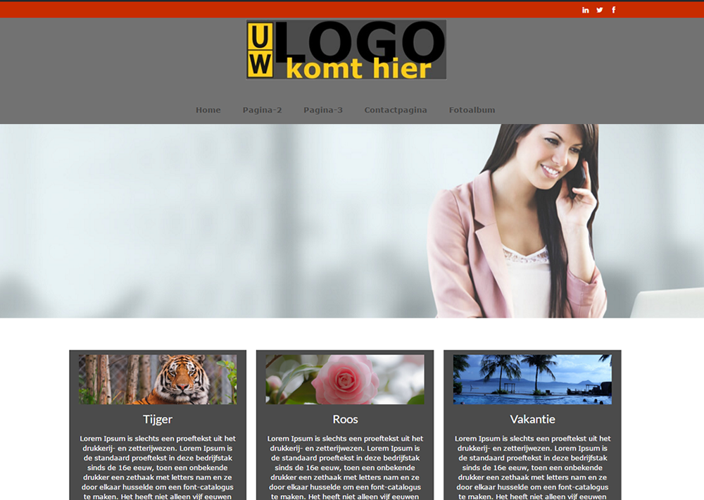 Voorbeeld website 2