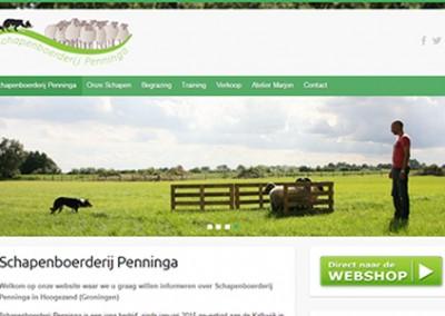 Schapenboerderij Penninga
